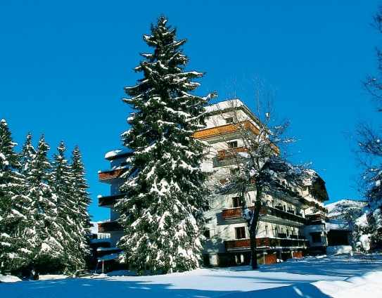 Snow and trees by Le Mont d'Arbois - Megeve