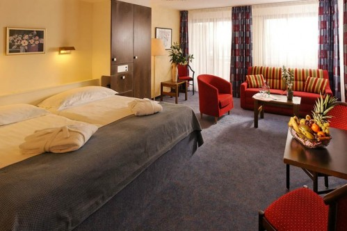Double valley View Room - Eurotel Victoria - Villars