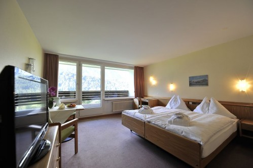 An example of a Standard Room in the Hotel Waldegg - Engelberg