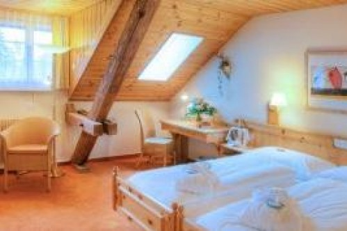 A Standard Double Room in the Sunstar Hotel Flims - Switzerland