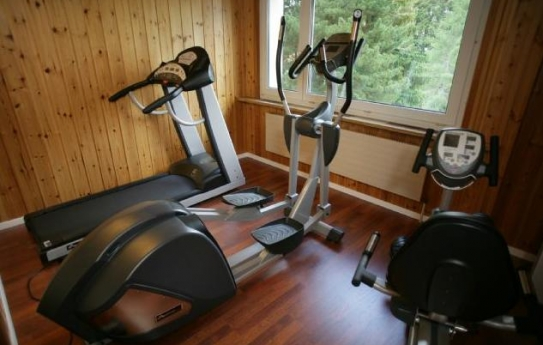 The Wellness Area - Sorell Hotel Asora - Arosa