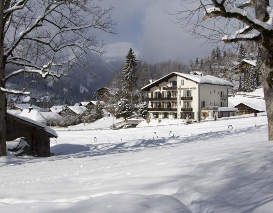 Outside View - Hotel Berghaus - Wengen