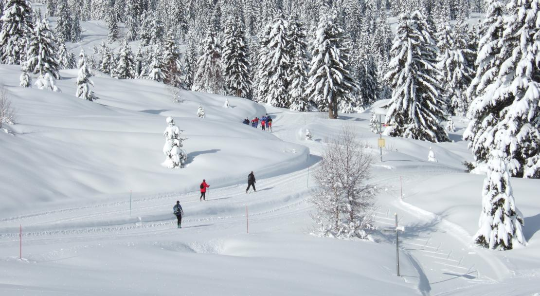 A very popular cross country skiing destiniation