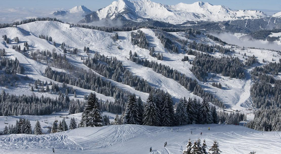 Ski Area, Les Gets, France