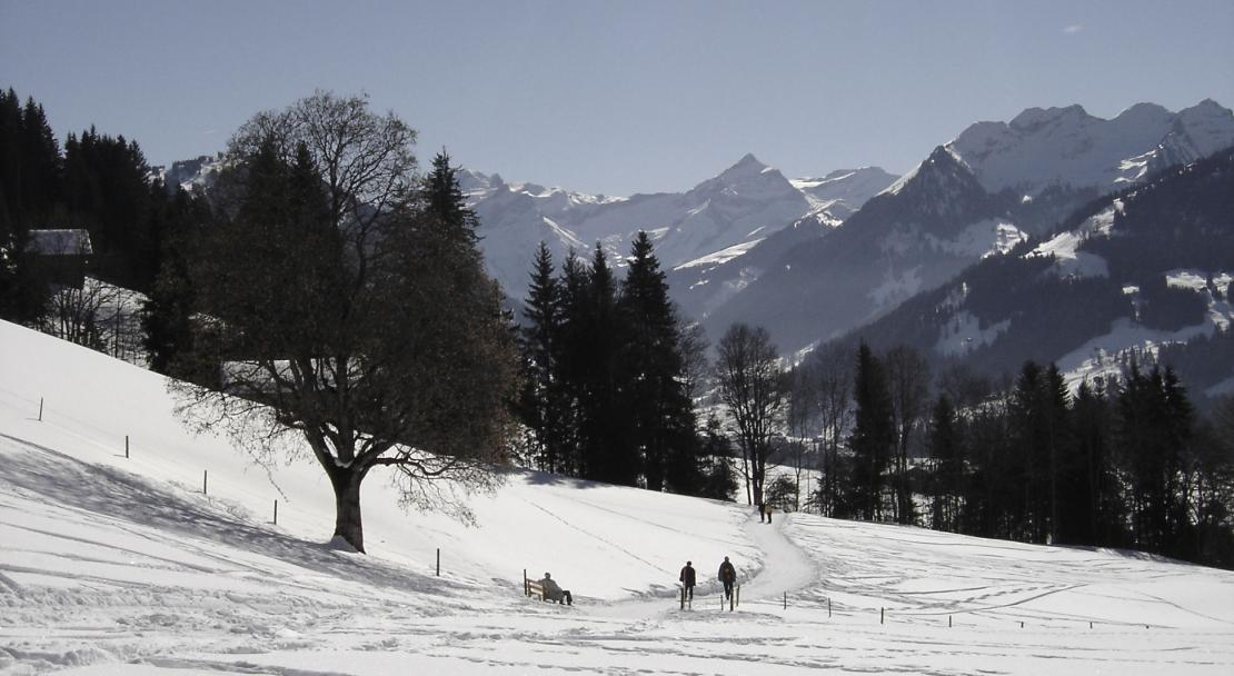 Snowy Gstaad