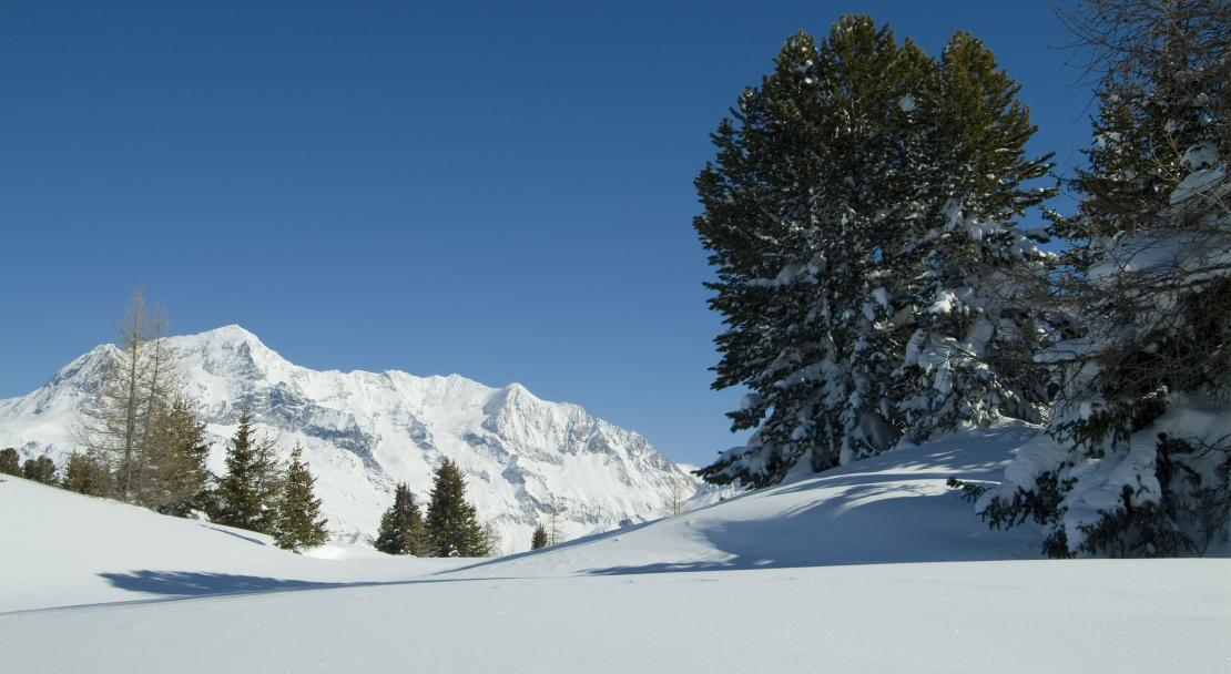Les Coches Slopes; Copyright: Philippe GAL/OTMLC