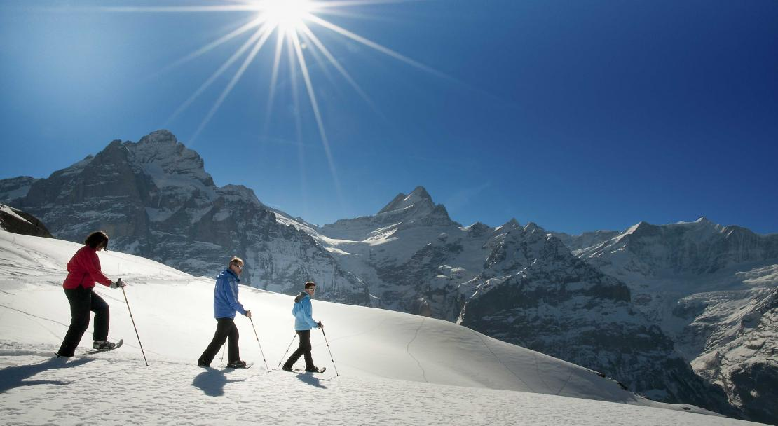 Snowshoeing in Grindelwald