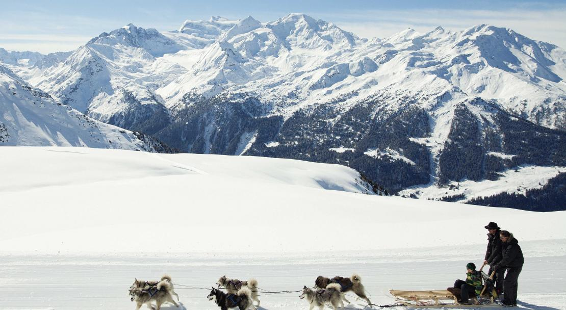 Dog Sledding in Verbier
