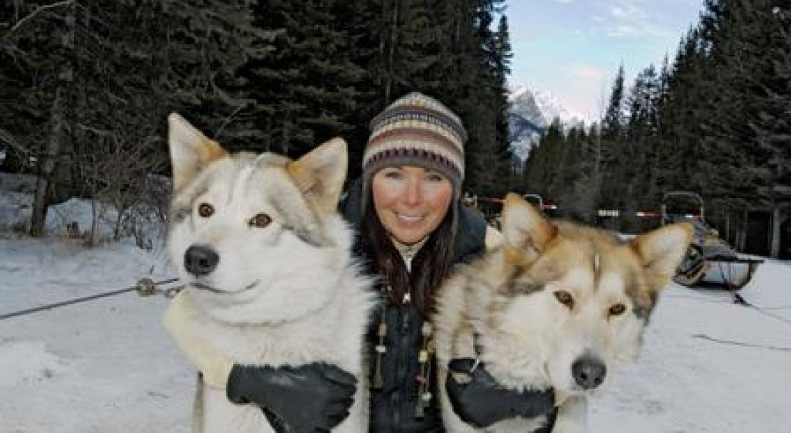 Huskies in Banff; Copyright: Banff Tourist Office