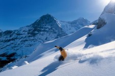 Explore Grindelwald's outback wilderness and drift through its deep powder