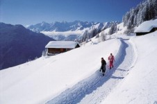 Short but enjoyable cross country ski loops- ideal for a half day activity