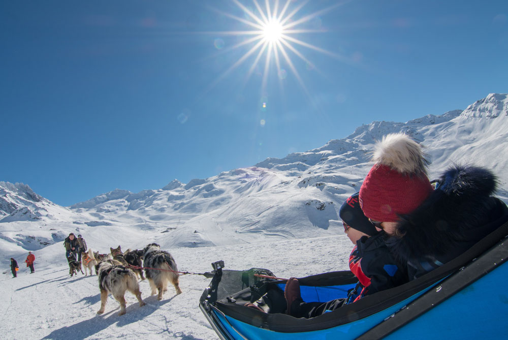 Dog sledding Val thorens