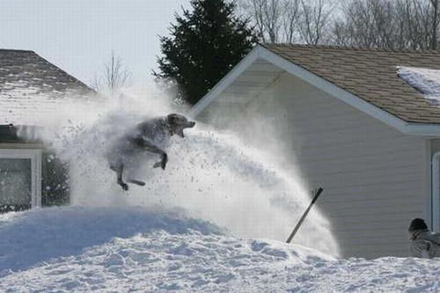 12 Crazy Snow Photos! | PowderBeds